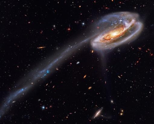По форме галактика  действительно напоминает огромного головастика, отсюда и характерное название. Фото из архива НАСА