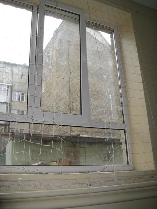 Через это окно неизвестные проникли в спортзал. Фото автора.