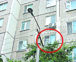Ребенка от смерти спасли электропровода, сливовое дерево и москитная сетка.