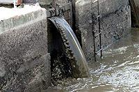 Если отходы доберутся до реки, рыба вымрет, а горожане могут подцепить инфекционные заболевания.
