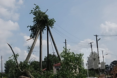 Село Батятич, Камянка-Буський район. Фото пресс-службы Львовоблэнерго.