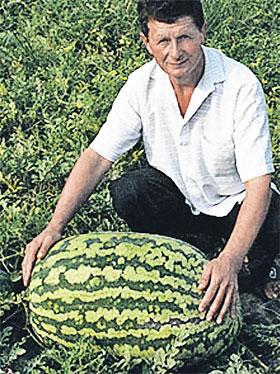 За этого рекордсмена Игорю Лихосенко предлагают 150 у.е.