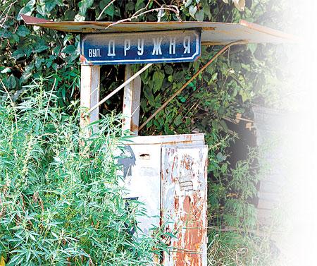 Визитка этой улицы - запустение и рифленые листья конопли.