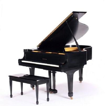 Певица продала рояль. Фото: Juliens Auctions.