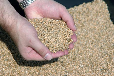 В неприкосновенном запасе государственного резерва хранятся продукты и товары - десятки и десятки наименований.
