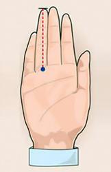 Пальцы измеряют с обратной стороны.