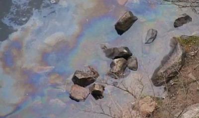 Эпидемиологи уверены, что пленка образовалась из пыли
