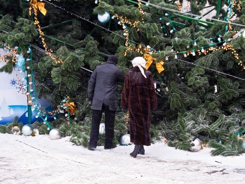 Многие горожане фотографировались на фоне упавшей елки. Фото: Игорь НОВИКОВ