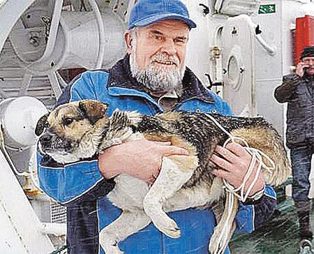 Польские моряки дворняжку спасли, отогрели и накормили.