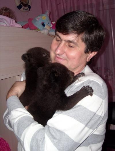 Кормить медвежат нужно раз в несколько часов.