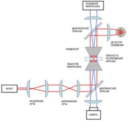 Общая схема оптического пинцета с основными элементами.