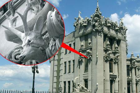 Один из оленей, украшающих резиденцию президента, может лишиться морды.