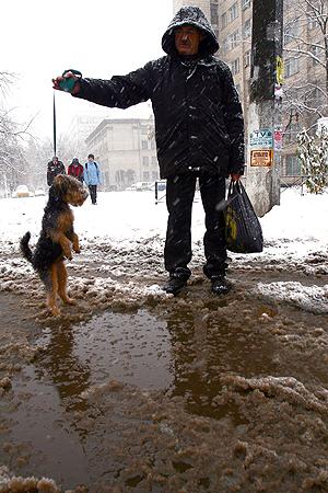 Экологи уверены: слякоть - далеко не главная неприятность, с которой столкнутся горожане, когда снег растает.