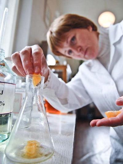 Проверить овощи можно в лаборатории рынка.