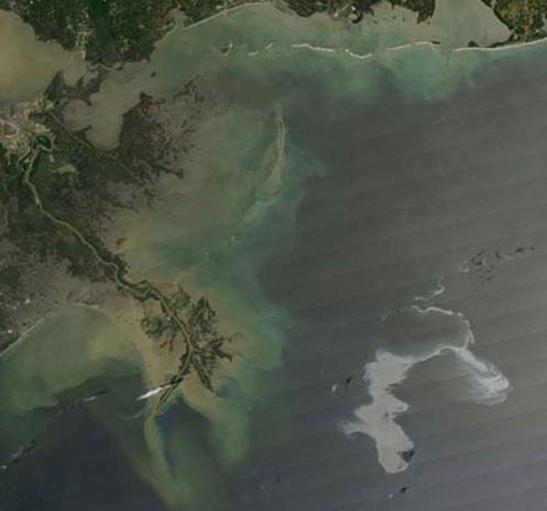 28 апреля: площадь нефтяного пятна достигла 2500 квадратных километров