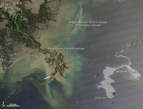 Нефтяное пятно в Мексиканском заливе: вид из космоса