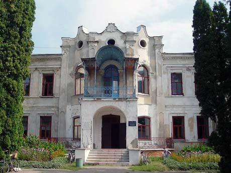 Дворец Закревских в Березовой Рудке.