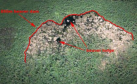Плотина обозначена красной линией.