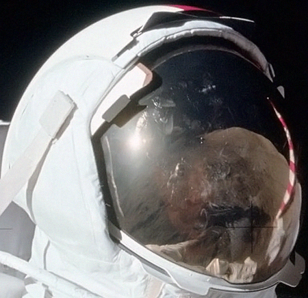 Помимо коричневой почвы, там еще виден какой-то гномик. Но скорее всего, это Шмит, а не какой-нибудь инопланетянин. Просто исказился, словно в кривом зеркале.