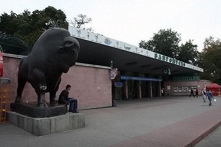 Скоро в зоопарке зверей не останется?
