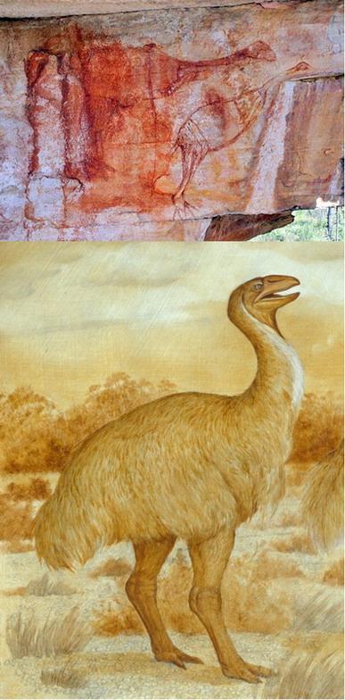 Вверху: Роспись на отдаленной скале выполнена красной охрой. Внизу: реконструкция птицы.