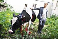Главный «виновник торжества» Илья Чичкан завел корову в центре Киева.
