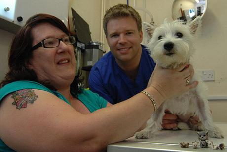 Сейчас собачка здорова, кошек врачи освободили. Фото: Daily Mail