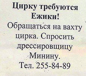 Попадешь тут в ежовые рукавицы, и прощай свобода, еж твою через арену... Объявление в витрине Краснодарского госцирка запечатлел Н. Дибров