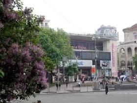 Деревья в столице сажают, а стройку метро временно заморозили.