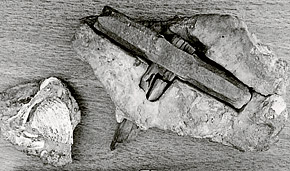 Обычный горняцкий топор XIX века у креационистов превратился в «Молот творца».