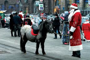 На Крещатике можно будет и на пони прокатиться, и с Дедом Морозом сфотографироваться.