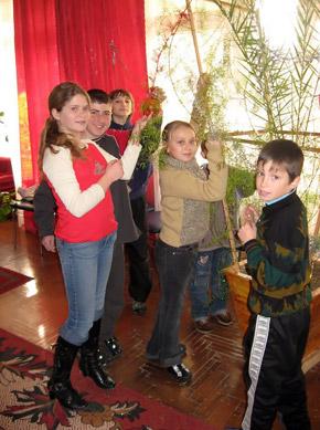 Пока не привезли елку, дети стали украшать комнатные растения.