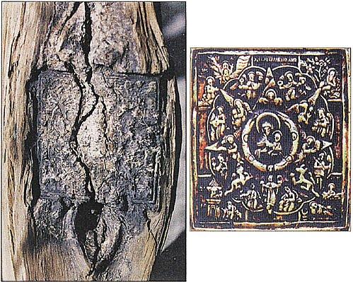 Сосновое полено (на фото слева), в которое вросла икона «Неопалимая Купина», так и не сгорело в печи.