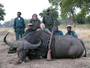 Раненый буйвол может наброситься на охотника, но этот сражен наповал одним выстрелом Торгашина (в центре).