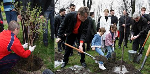 Политики делают себе PR из озеленения города.