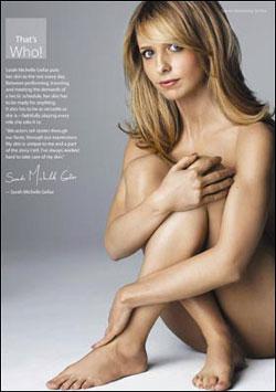 Сара Мишель снималась в благотворительной эротической сессии. Фото: The Sun