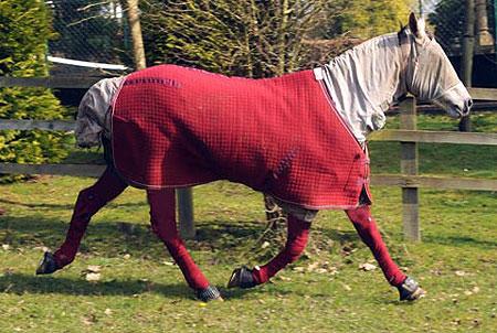 Без странного наряда Пандора начинает задыхаться и покрываться волдырями. Фото: Daily Mail