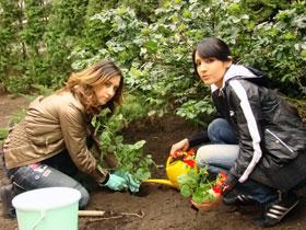 У Ани и Алины оживают даже самые слабые растения.
