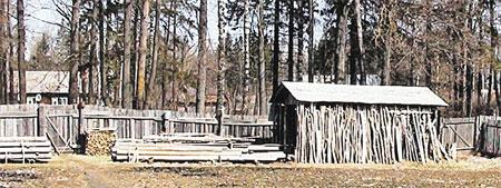 Над неглубокой могилой деда Саши построили дровяник. Чтобы отбить неприятный запах и неудобные вопросы соседей.