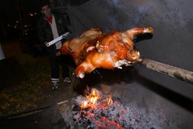 Украшением вечера стала… свинья.