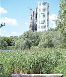Проспект Маяковского, 1-3. На берегу этого озера будет дом.