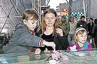 Сын и дочь актера-автогонщика остались жить с мамой Марией Голубкиной.