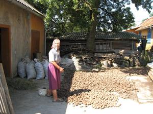 Перед приходом воды селяне судорожно выкапывали картошку с огородов.
