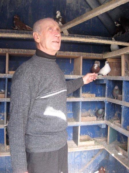 Игорь Биндасов – 60 лет с голубями.