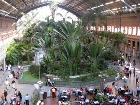 Внутри Мадридского вокзала - настоящий оазис.